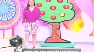 "Silvia Abravanel Erra Site E Nome Do Programa ""Sábado Animado"" - 18/07/2015"