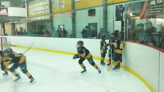 Whitby Wildcats Minor Atom AAA 2018 International Silver Stick Championship Game