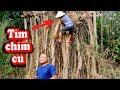 Cu Xanh Hầm Tiêu Xanh - Ẩm Thực Đầu Trọc | Sơn Dược Vlogs #139
