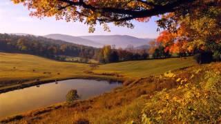Ах, осень, моя золотая печаль