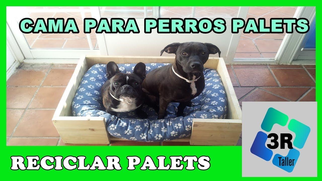 Hacer cama con palets para perros dyi youtube - Casa de perro con palets ...