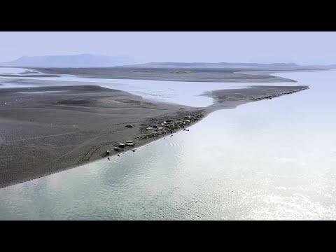 The Dreadnought Diaries 2 | Iceland (Senua's Saga: Hellblade II)