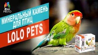 Минеральный камень для птиц LoLo Pets | Обзор минеральный камень для птиц LoLo Pets