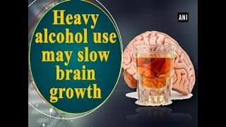 Heavy alcohol use may slow brain growth - Health News