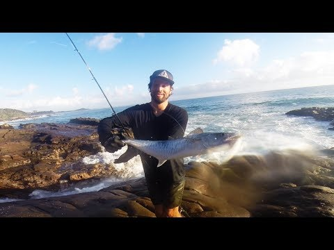 Land Based Spanish Mackeral Fishing Sunshine Coast  & Noosa River GT