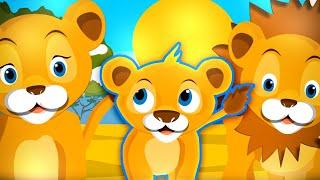 Dziecięce Przeboje - Mały Lew ( Oficjalny teledysk)