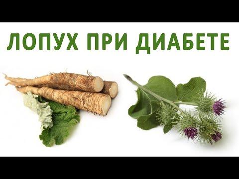 Лопух (репейник), лечение лопухом. Свойства целебных трав