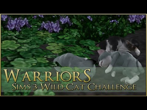 Birth of the Kits of the Sea || Warrior Cats Sims 3 Legacy - Episode #79