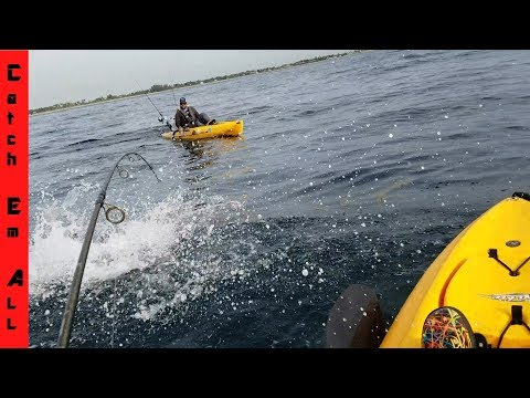 Kayak Fishing OFFSHORE KingFish Special!