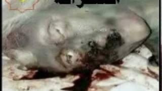 iran islam allah khodaAzabe Ghabr