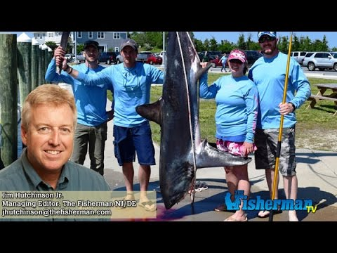June 2 2016 new jersey delaware bay fishing report with for Barnegat bay fishing report