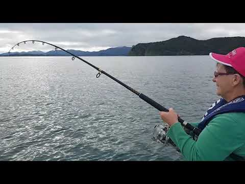 Snapper Action In The Bay Of Islands On Days Out Fishing Charters