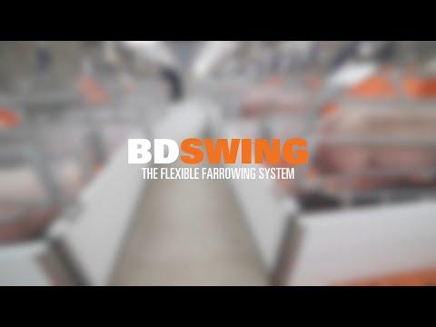 BDSWING