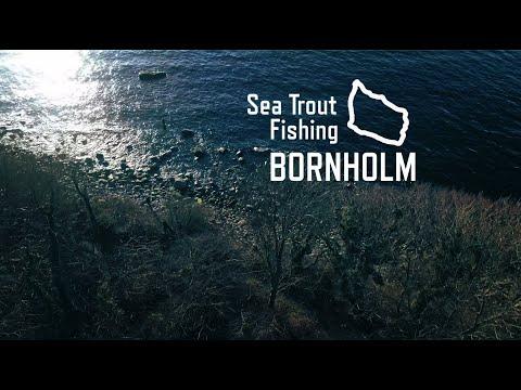 Sea Trout Fishing Bornholm