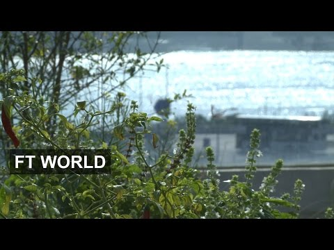 Hong Kong's urban farms | FT World