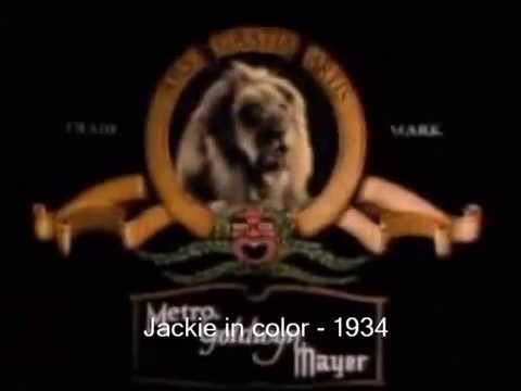 История заставки Metro-Goldwyn-Mayer.