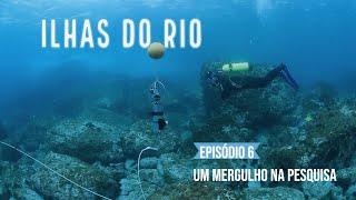 Um mergulho na pesquisa sobre peixes - Webserie Ilhas do Rio Ep.#6