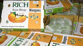 Startup Mango Export Business to Canada from India  with International Broker Kripal Chavada