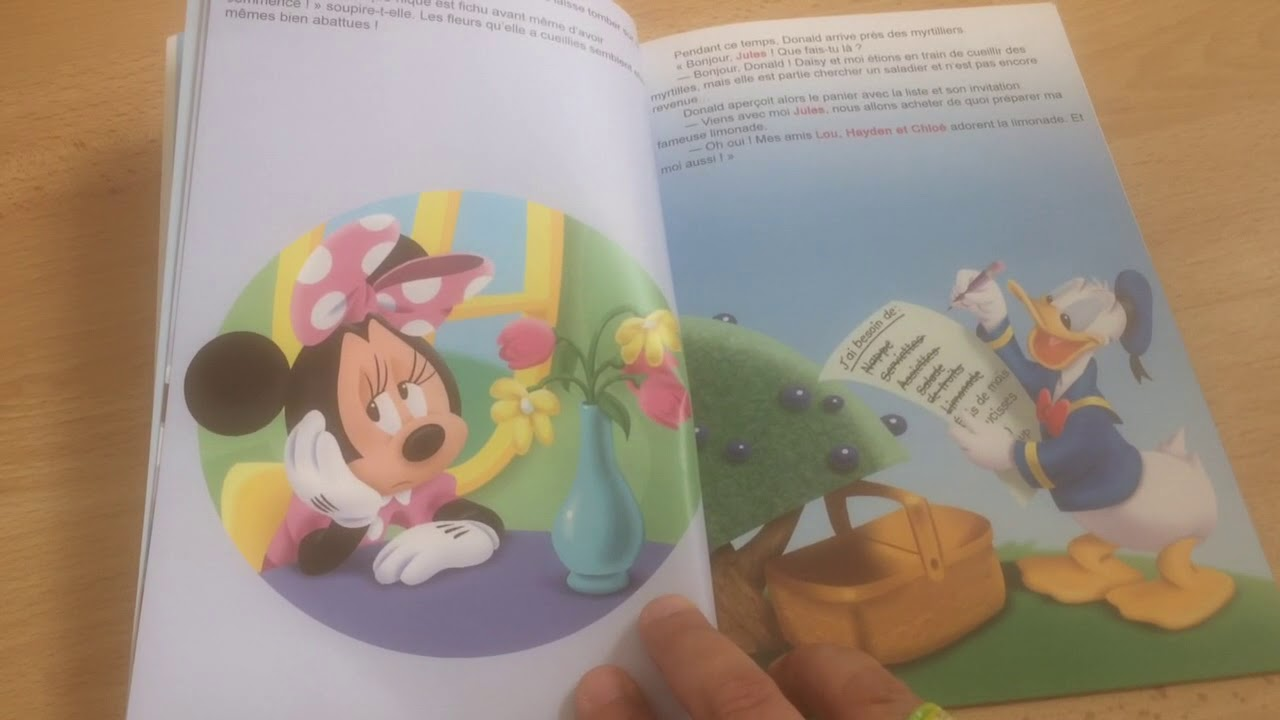 Livre Mon Aventure Avec Disney Le Pique Nique D Anniversaire Editions Hachette Collections