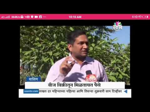 Umesh Joshi Solar News SamTv