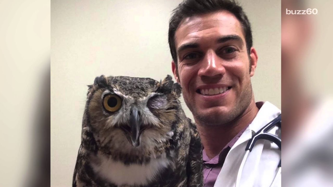 this ridiculously good looking vet has gone viral youtube