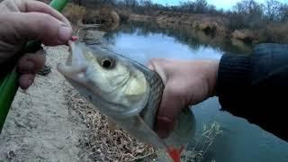 Рыбалка на реке в конце октября на поплавок
