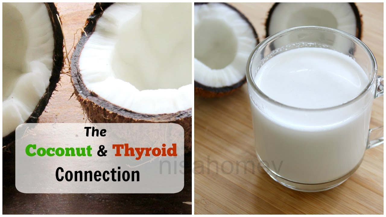 Coconut Milk  The Best Option To Cold Pressed Coconut Oil  How To Make  Fresh Coconut Milk At Home