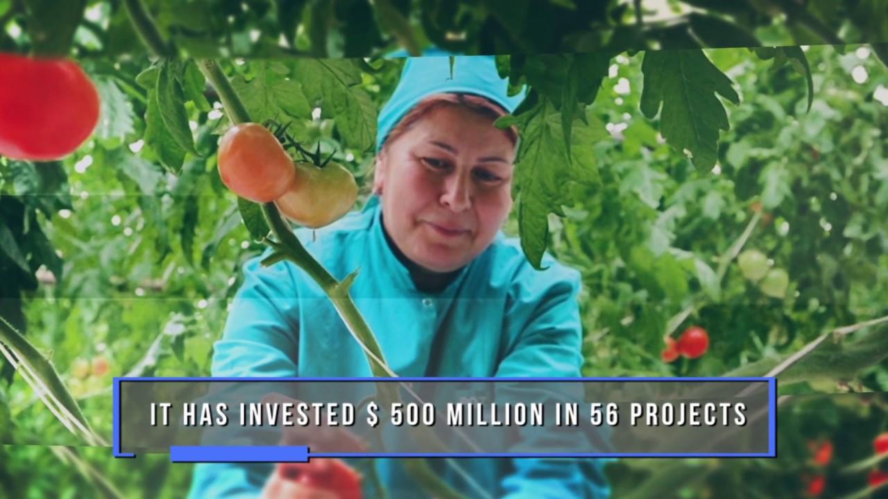 World Bank in Azerbaijan: 25 Years of Partnership