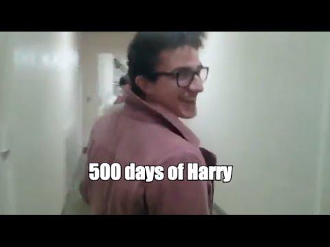 500 Days of Harry (Alternate Camera)