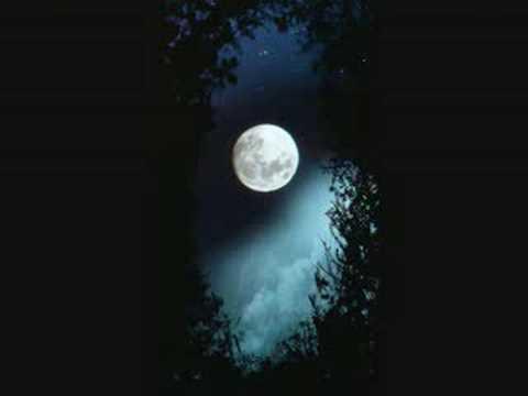 Waar is de maan ? - tekst: Elly Zuiderveld
