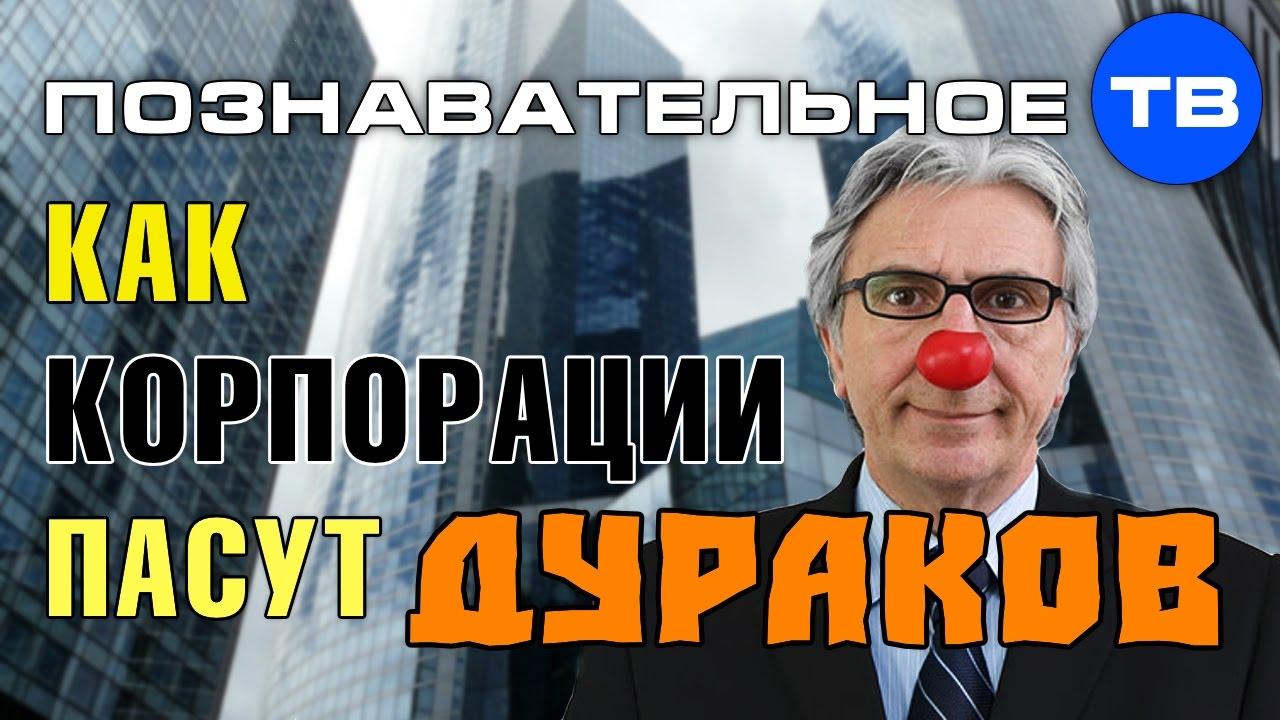 Картинки по запросу Как корпорации пасут дураков (Познавательное ТВ, Валентин Катасонов)