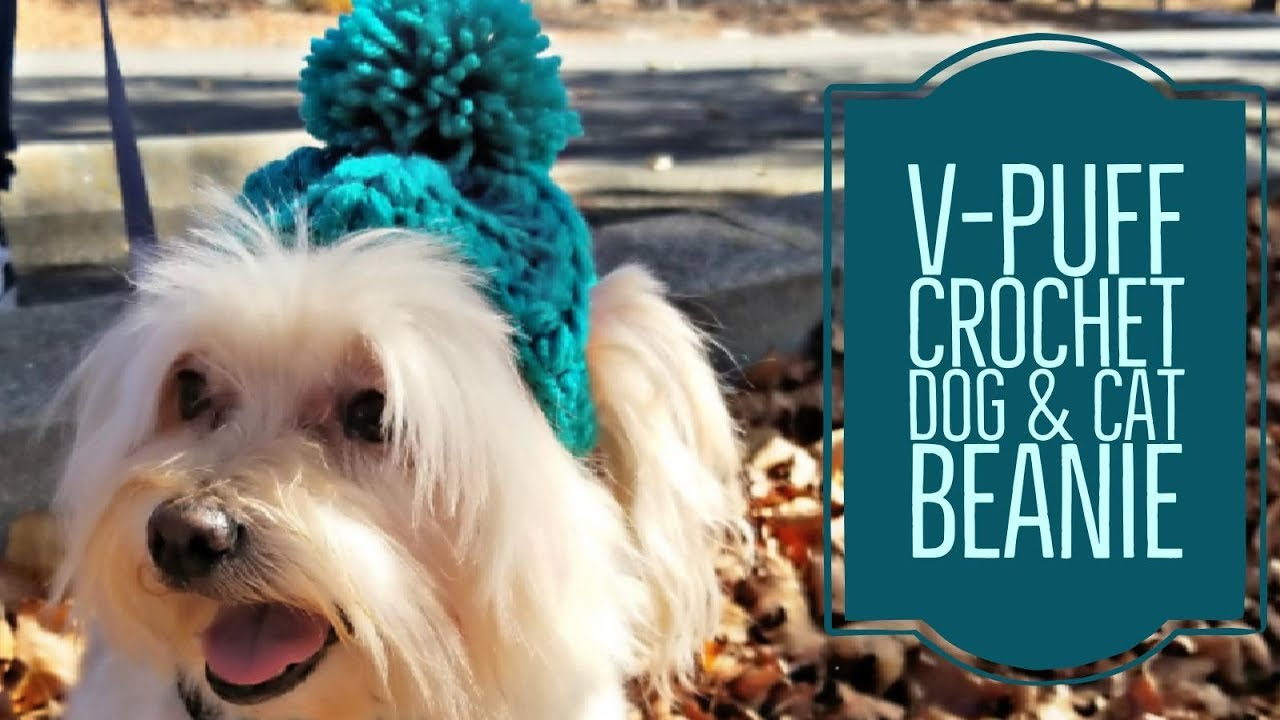 V Puff Crochet Dog Cat Beanie Crochet Tutorial Youtube