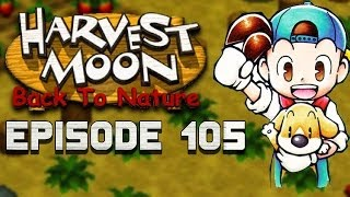 Regular Summer Day | Harvest Moon | Back to Nature EP.105