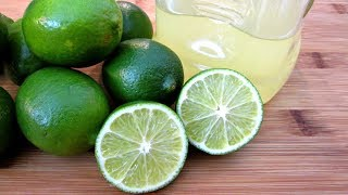 Lime Margarita Mixer Recipes - Fresh or Concentrated - PoorMansGourmet