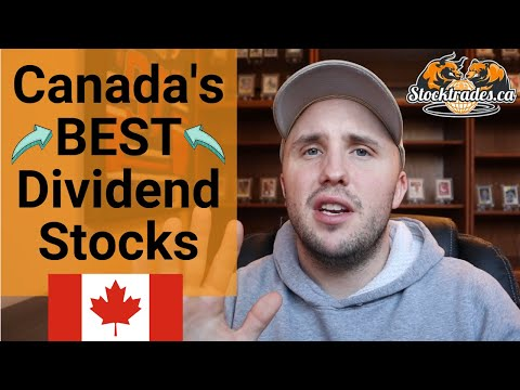 The BEST Canadian Dividend Stocks You Need To Be Looking At For 2020