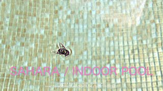 Sahara / Indoor Pool (Official Video)