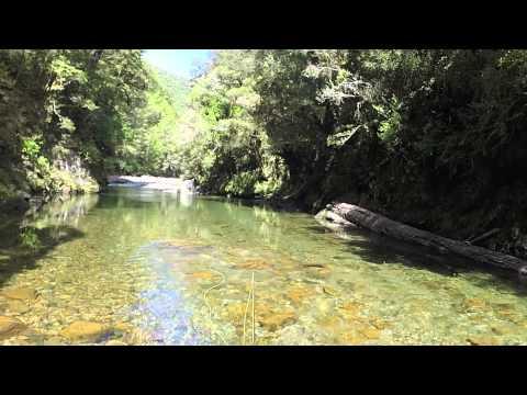 Fly Fishing South Island, New Zealand