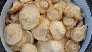 видео Как покупные маринованые грибы сделать съедобными