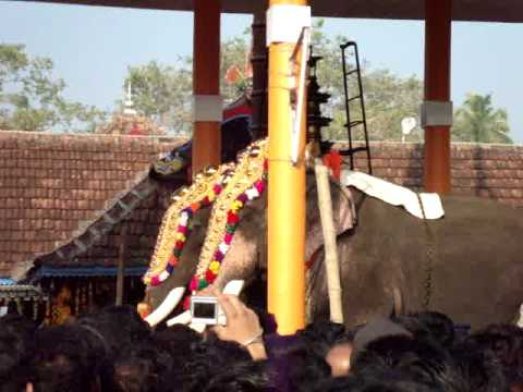 Cherai Thalapokka Malsaram 2010 - Mangalamkunnu Ayyappan - Thrikkadavoor Sivaraju