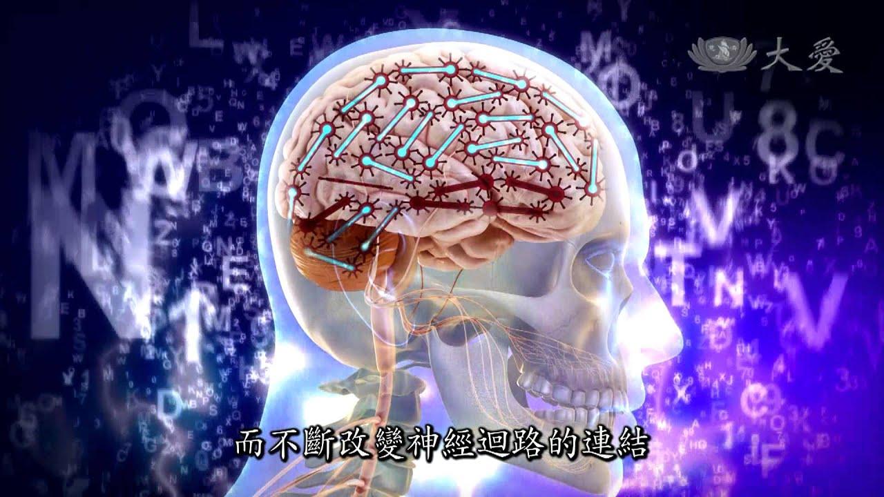 【發現】精華影片 - 20131207 - 人體奧秘系列 - 大腦地圖 - YouTube