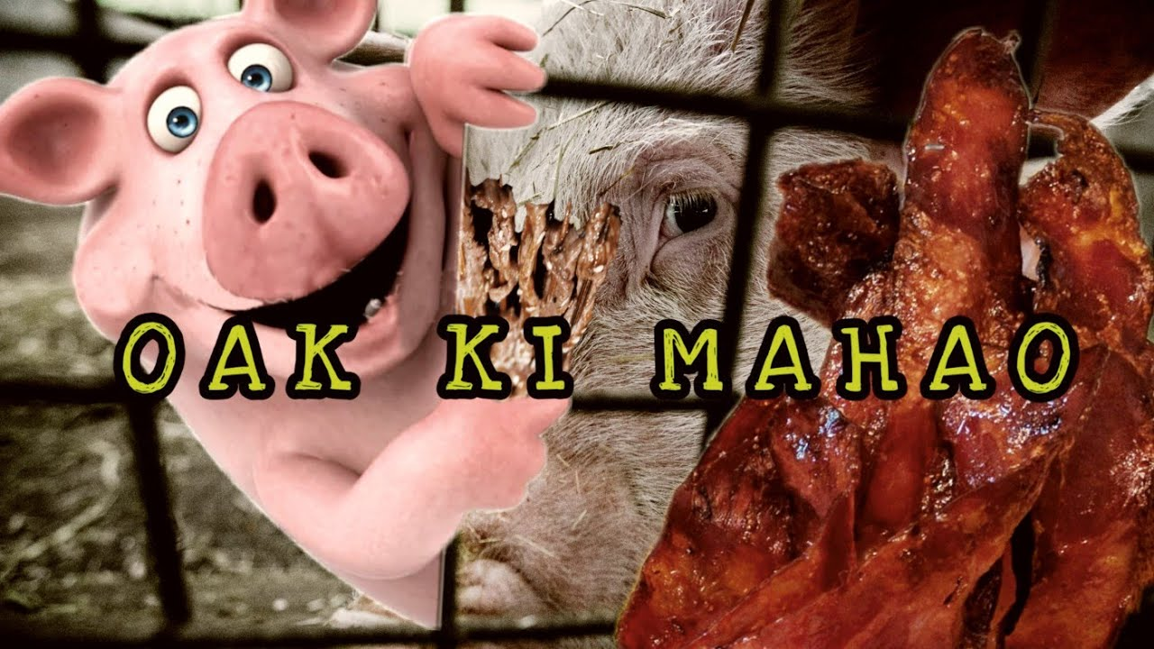 Download OAK KI MAHAO || A SPECIAL SONG FOR PORK LOVERS || OFFICIAL MUSIC VIDEO 2020.