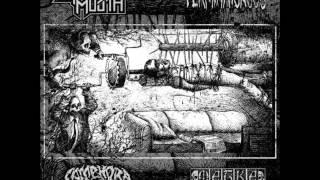 Camphora Monobromata - Grindcore With No Bullshit