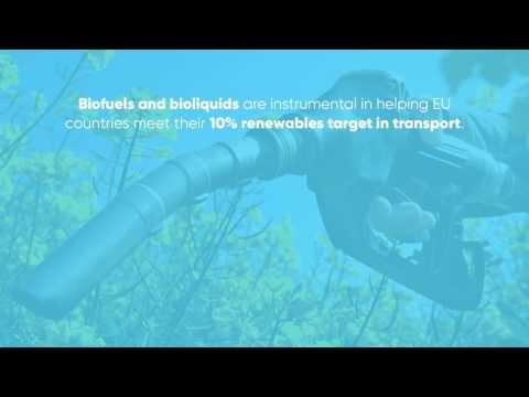 The Renewable Energy in Europe