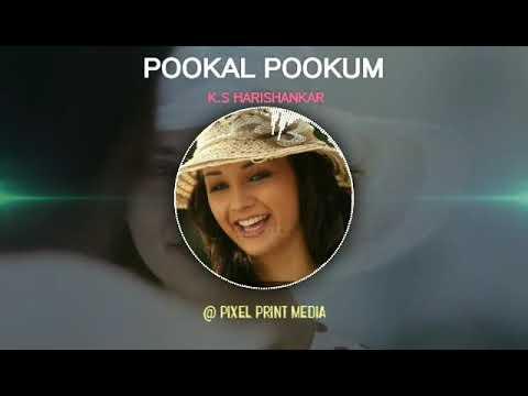 Pookal pookum tharunam video song free download.