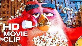 Свинья Вторгается в Дом к Реду Сцена - ANGRY BIRDS В КИНО 2 (2019) Фрагмент из Фильма