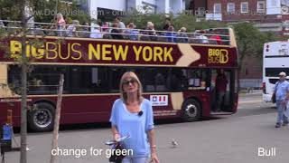 New York Guide, Big Bus Red Route - Jean's film for Cruise Doris Visits