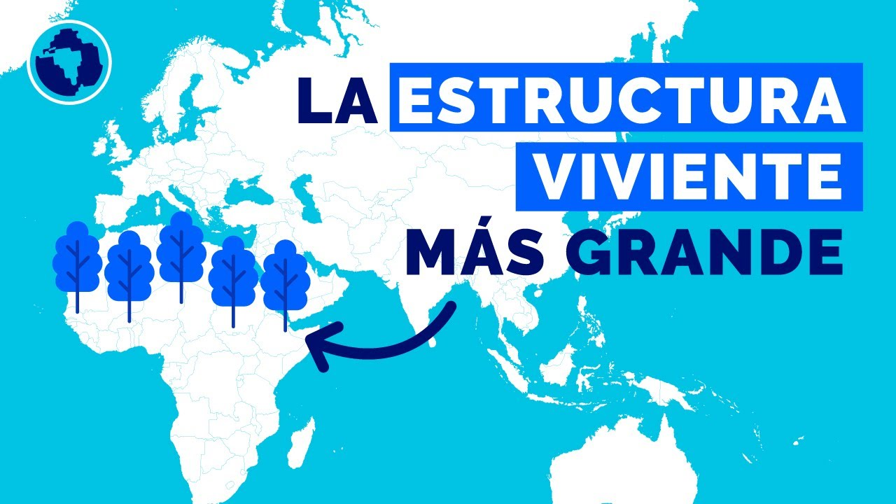 Muralla Verde del Sahel, la gran esperanza del planeta