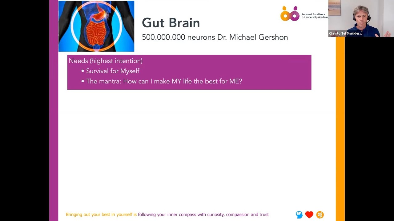 Why your Second Brain the Gut is actually your boss?
