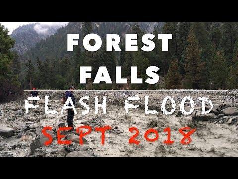 Raging Flash Flood in Forest Falls (September 30, 2018)
