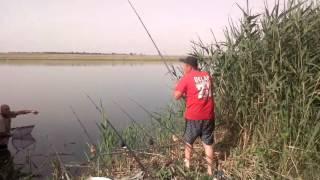 19 июня 2016 троица на ударнике(1)(Наша с Юриком рыбалка., 2016-06-19T17:46:35.000Z)
